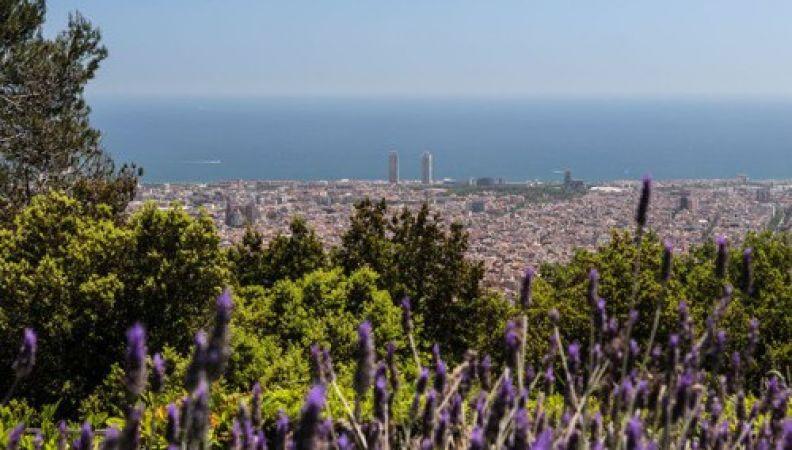 Barcelona verde
